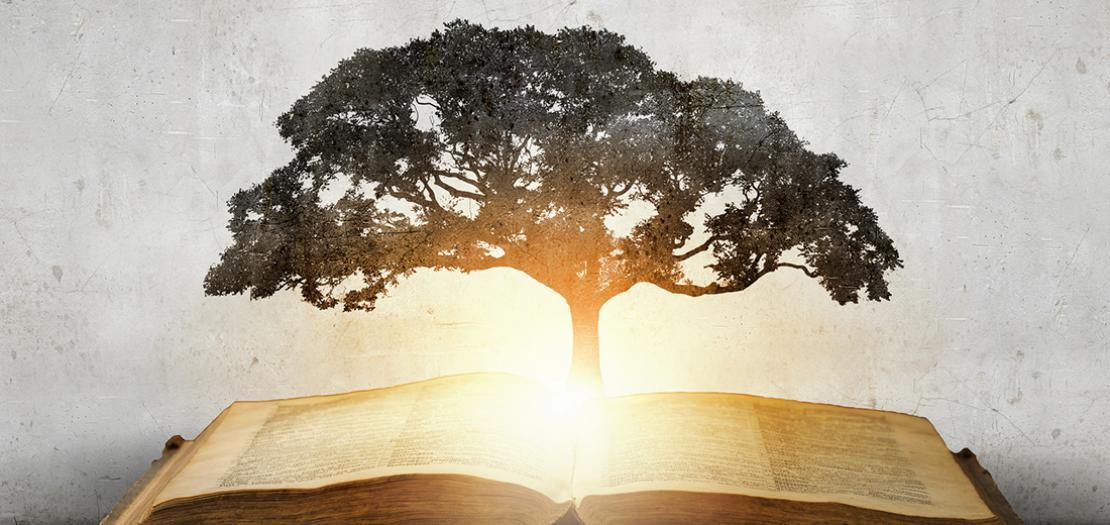 """من أهمّ ثمار قبس """"الحكمة الالهيّة"""" في الإنسان التعلّم من التجارب واستخلاص العِبَر الروحانيّة، واكتساب الخبرة"""