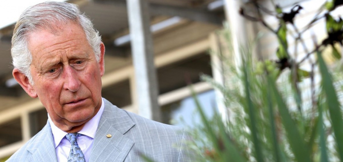 الأمير البالغ 71 عامًا، والذي أصيب بفيروس كورونا في آذار ،يعد من أقوى المدافعين عن موارد الطاقة المستدامة والعمل ضد التغير المناخي