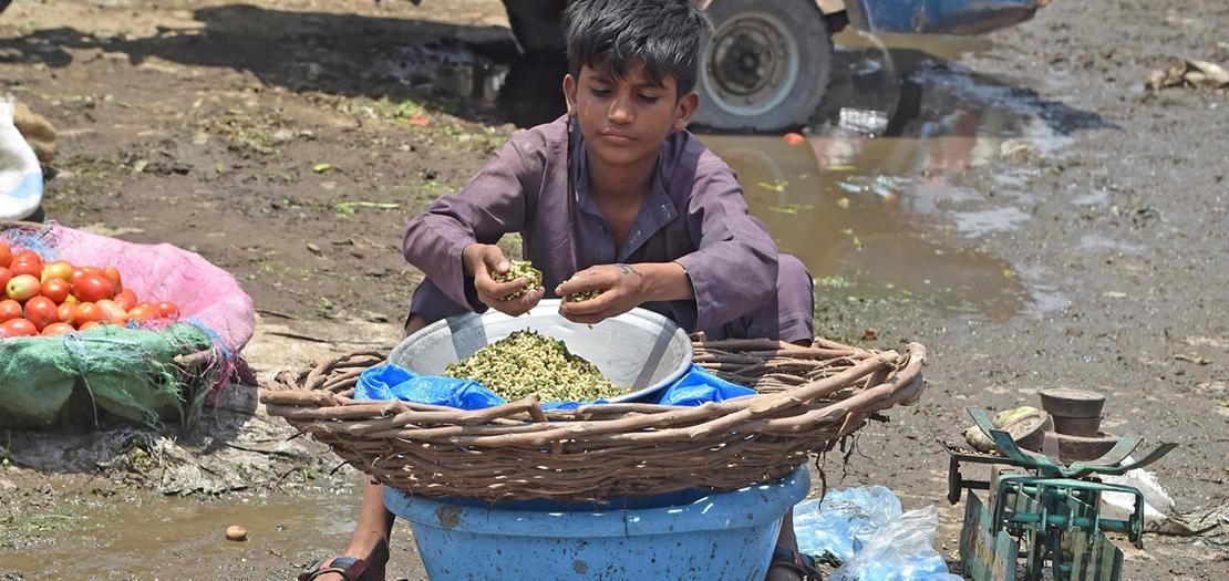 طفل يبيع الخضار في سوق بلاهور في 10 حزيران 2020