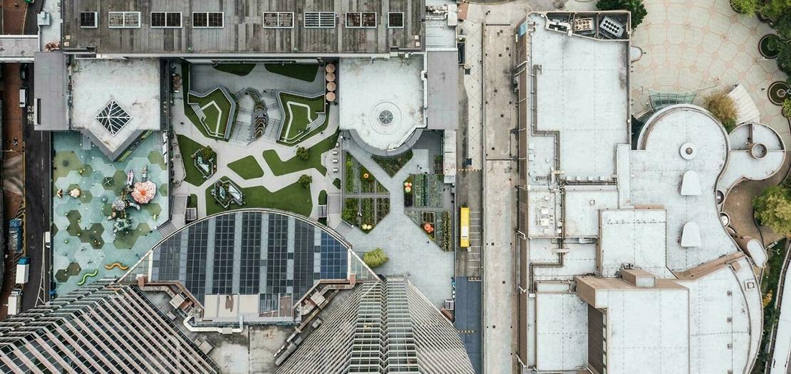 صورة ملتقطة من الجو في 24 آذار 2021 لسطوح مزروعة في هونغ كونغ
